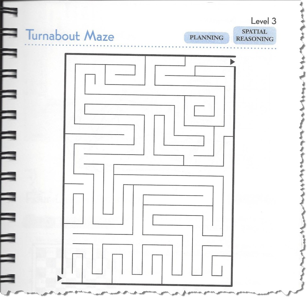 Traditional Maze from Brain Games