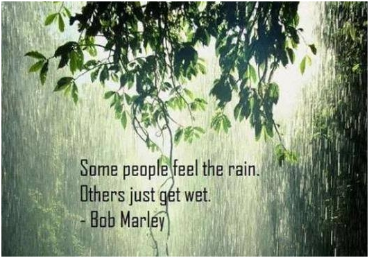 2015-0716 some_people_feel_the_rain